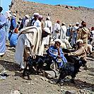 Berber, sheep market, Ousmilal, Marocco