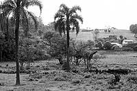 Landscape, Tupandi, Rio Grande do Sul, Brazil