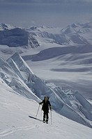 cross country skier, slopes of Mt. Bona, St Elias Range, Alaska