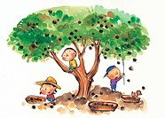 Children picking chestnuts from a tree