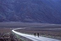 A couple cycling on a desert road near Death Valley Ca