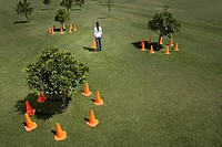 Woman placing traffic cones around trees in field