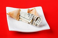Close_up of a twenty dollar bill in a fortune cookie