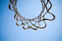 Basketball hoop, close_up