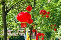 Chinese lanterns hanging on trees, Emerald Valley, Huangshan, Anhui Province, China