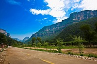 Plants along a road, Taihang Grand Canyon, Henan Province, China