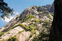 Low angle view of a mountain, Huangshan, Anhui province, China