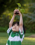 Asian boy holding plant seedling