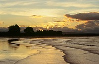 New Zealand _ South Island _ Nelson _ Tahunanui Beach _ Rising tide