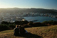New Zealand _ North Island _ Wellington _ View from Mt Victoria