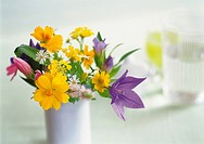 Flowers in Vase, Front View, Close Up, Differential Focus, In Focus, Out Focus
