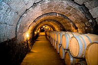 Spain _ Castile and Leon _ Province of Valladolid _ Route of Ribera del Duero _ Sotillo de la Ribera _ Cave from the bodegas Ismael Arroyo
