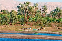 Egyt _ fluvial topography