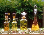 different herbs in vinegar and oil
