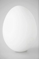 Single white egg close_up