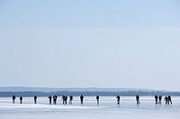 People skates on a frozen lake., Ivösjön, Skåne, Sweden