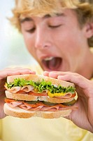 Teenage Boy Eating Sandwich