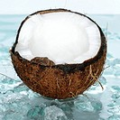 Coconut on crushed ice, close_up