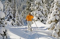 Austria, Salzburger Land, Altenmarkt_Zauchensee, Young woman cross_country skiing, rear view
