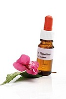 Bottle with Bach Flower Stock Remedy, Impatiens (thumbnail)