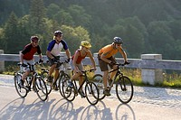 Germany, Bavaria, Sylvenstein, Four mountain bikers riding across highway