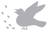 Vogel_Futter