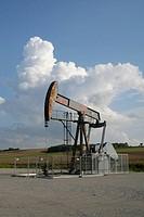 marchfelder Öl