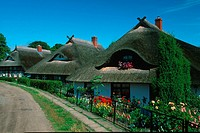 Reed roofed houses, Wustrow, Mecklenburg_Western Pommerania, Germany