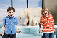 Scared boys screaming at polar bears