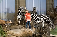 Boy standing with stuffed safari animal (thumbnail)
