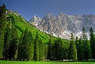 Märchenwiese im Bodental, Österreich