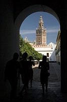 Giralda tower as seen from Patio de Banderas, Sevilla. Andalucia, Spain