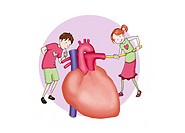 HEART, ILLUSTRATION Two children explaining : ´The heart works as a pump. It has to propulse the blood into the lungs as well as in the rest of the bo...