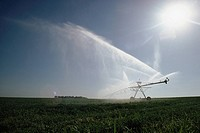 Irrigating a field