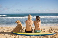 Women sitting on surfboard with dog at beach