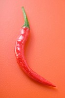 Red chilli on red background