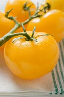 Five yellow cherry tomatoes on tea towel