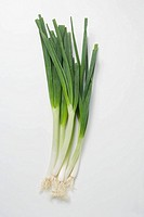 Several spring onions
