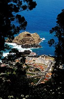 View from hilltop through trees to Porto Do Moniz, Madeira