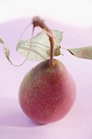 Red pear with stalk and leaves