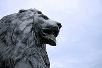 Lion sculpture, London, England