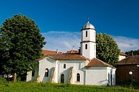 Orthodox church of Bajkal, chestnut and lime tree, Danube valley, Northern Bulgaria