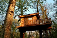 Tree house hotel hang on trees accessible only by ladders, Indian Forest Adventure Park, Le Bois Lambert. Le Bernard, Moutiers-les-Mauxfaits, Vend&#233;e, ...