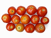 Tomatoes are arranged together in a group. Lycopersicon esculentum. Scientific classification. Kingdom: Plantae. Subkingdom: Tracheobionta. Division: ...