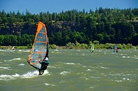 Windsurfer, Spring Creek National Fishery Hatchery, Columbia River Gorge National Scenic Area, Washington, USA