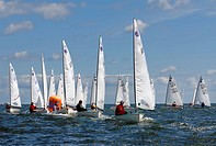 Sailing boats competing in a regatta on Schilksee, Kiel Week 2008, Kiel, Schleswig_Holstein, Germany, Europe