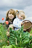 Sisters crouching by fresh lettuce in field, younger girl holding basket