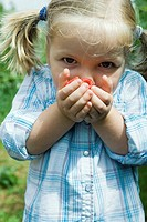 Little girl holding handful of raspberries up to her face