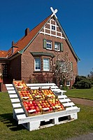 Fruit stand in front of an old house, different kinds of apples, fruit-growing region Altes Land, Lower Saxony, Germany, Europe