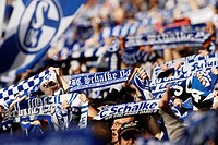 German soccer fans, supporters of FC Schalke 04 waving their blue and white scarves in support of their team, Gelsenkirchen, North Rhine_Westphalia, G...
